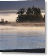 Morning Fishing 3 Metal Print