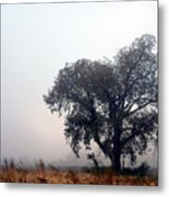 Morning Fog - The Delta Metal Print
