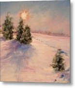 Morning Frost Metal Print