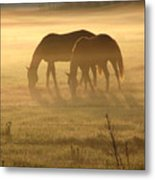 Morning Grazing Metal Print