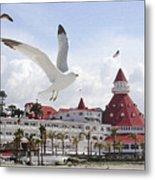 Morning Gulls On Coronado Metal Print