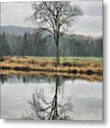 Morning Haze And Reflections Metal Print