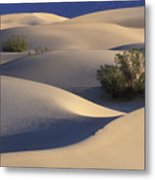 Morning In Death Valley Dunes Metal Print