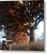 Morning In Tennessee Metal Print