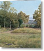 Morning In The Arroyo Seco Metal Print
