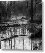 Morning In The Swamp Metal Print