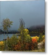 Morning Light And Fog Metal Print