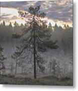 Morning Light At Saari-soljonen 7 Metal Print
