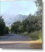 Morning Light By The Russian River Metal Print