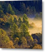 Morning Mist In The Trossachs Metal Print