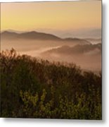 Morning Mist Three Metal Print