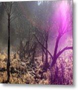 Morning Misty Flare Metal Print