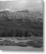 Morning Mountains In Yellowstone Metal Print