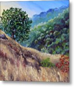 Morning On A Hilltop Metal Print
