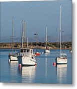 Morning On Morro Bay B3984 Metal Print