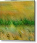 Morning On The Lake With Whooping Cranes Metal Print by BJ Abrams