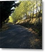 Morning Path Metal Print