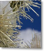 Morning Snow On Cactus Spines #1 Metal Print