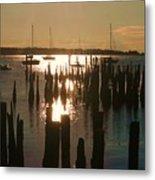 Morning Sunrise Over Bay. Metal Print