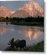 Morning Tranquility Metal Print
