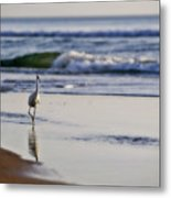 Morning Walk At Ormond Beach Metal Print