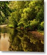 Morning Warmth Williams River  Metal Print