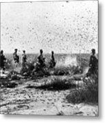 Morocco: Locusts, 1954 Metal Print