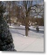 Morris County New Jersey Snowstorm Of 12-26-10 Metal Print