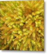Moss Abstract Metal Print