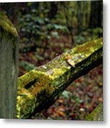 Moss Covered Fence Metal Print