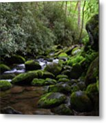 Moss Covered River Rocks Metal Print