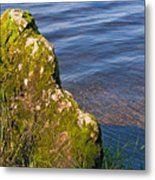 Moss Covered Rock And Ripples On The Water Metal Print