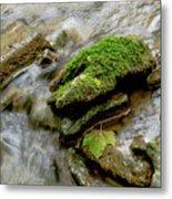 Moss Covered Rock Metal Print