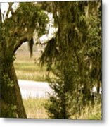 Moss On The Marsh Metal Print