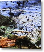 Moss On Wood Metal Print