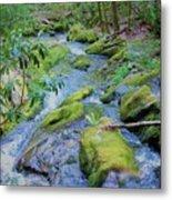 Mossy Blue Brook Metal Print