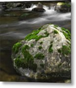 Mossy Boulder In Mountain Stream Metal Print