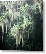 Mossy Dream Metal Print