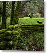 Mossy Fence 2 Metal Print