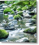 Mossy Forest Stream Metal Print