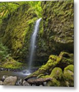 Mossy Grotto Falls In Summer Metal Print