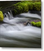 Mossy Rocks  Oregon 1 Metal Print