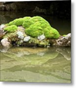 Mossy Turtle Rock Metal Print