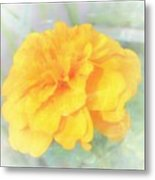 Mostly Yellow Metal Print