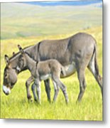 Mother And Baby Burro Metal Print