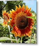 Mother And Daughter Sunflowers Metal Print