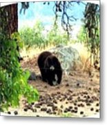 Mother Bear Metal Print