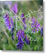 Mother Nature's Art Metal Print