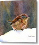 Mother Wren Metal Print