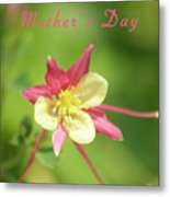 Mothers Day Card 5 Metal Print